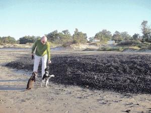 """Chris on """"mussel"""" beach."""