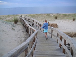 Walking over the dunes to the beach.